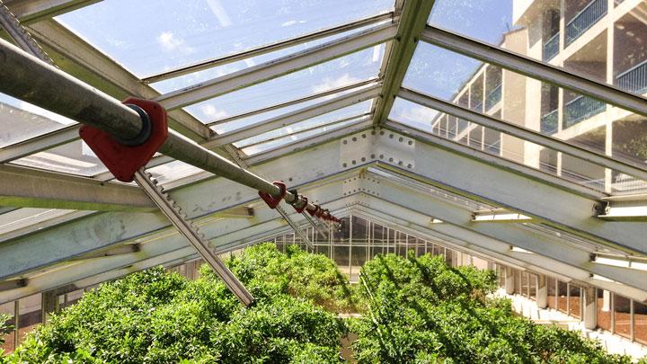 Portola-skylight-inspection-2427