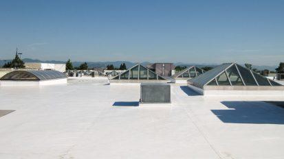 Rogue Valley Mall Skylight Survey