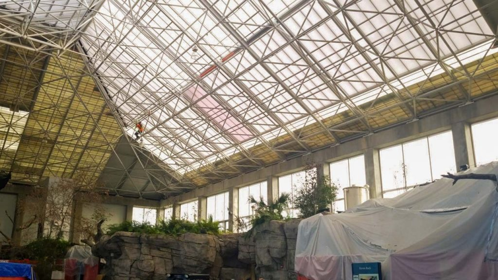 NC Aquarium Ft Fisher skylights 28713-11